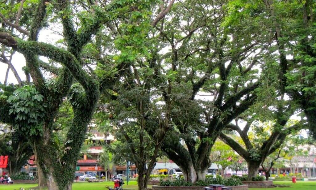Park in Suva
