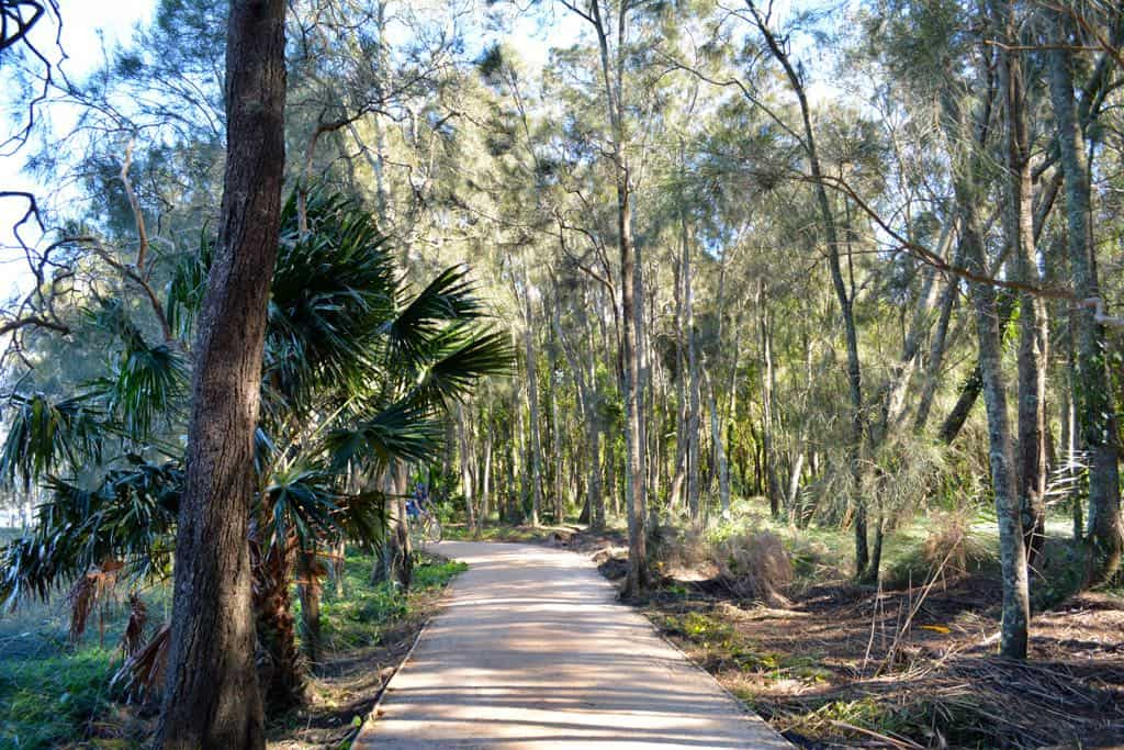 Narrabeen Lakes can be explored on the trail which winds around the shore of the lake, cutting through mahogany forests, swamps and pristine bushland.