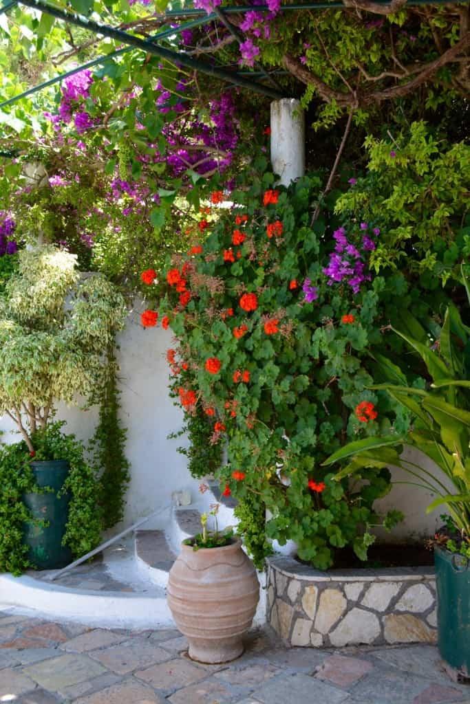 Flowers like the Garden Eden