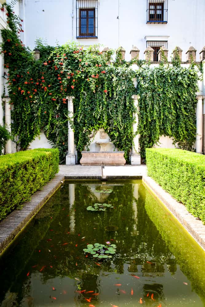 A quiet courtyard in the lesser visited parts of the palace.