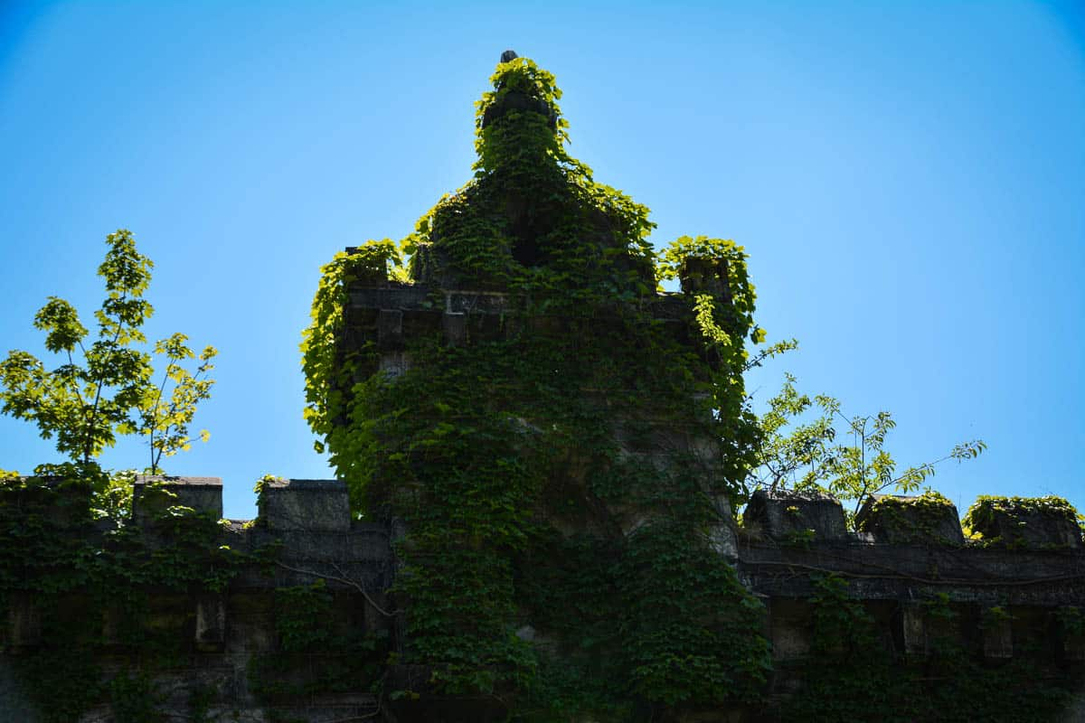 The walls of the 19th century building shell are clad in ivy, adding a mystical aura to the hospital.